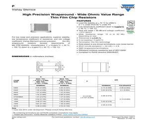 P0705K1010BGT.pdf